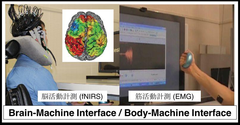 神経情報処理研究室